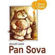 Pan Sova - Kniha
