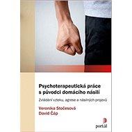 Psychoterapeutická práce s původci domácího násilí: Zvládání vzteku, agrese a násilných projevů - Kniha