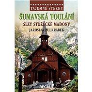 Šumavská toulání: Slzy stožecké Madony - Kniha