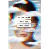 Silicon Valley Podivné údolí - Kniha