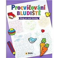 Procvičování Bludiště: Úkoly pro malé školáky - Kniha