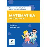 Pracovní sešit Matematika 1 - Počítáme do 20 - Kniha