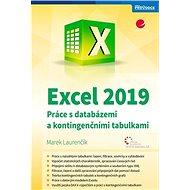 Excel 2019: Práce s databázemi a kontingenčními tabulkami - Kniha