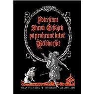 Potrestání stavů českých po prohrané bitvě bělohorské - Kniha