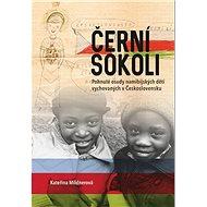 Černí sokoli: Pohnuté osudy namibijských dětí vychovaných v Československu - Kniha