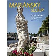 Mariánský sloup: Obrazový průvodce obnovou barokní památky