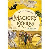 Magický expres Mezi světlem a stíny - Kniha