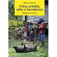 Krávy, prasata, války a čarodějnice: Hádanky kultury - Kniha
