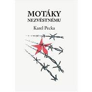 Motáky nezvěstnému - Kniha