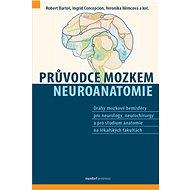 Průvodce mozkem: Neuroanatomie - Kniha