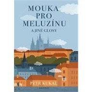 Mouka pro meluzínu a jiné glosy - Kniha