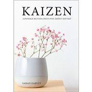 Kaizen Japonská metoda postupné změny návyků - Kniha