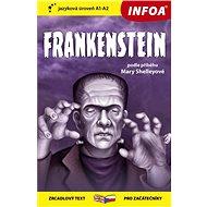 Frankenstein: zrcadlový text pro začátečníky