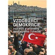 Vzdorující demokracie: rozcestí a proměny současného Turecka - Kniha