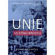Unie ve stínu brexitu - Kniha
