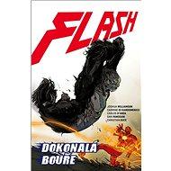 Flash Dokonalá bouře - Kniha