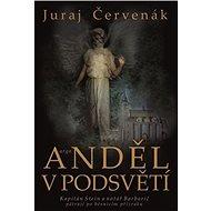 Anděl v podsvětí - Kniha