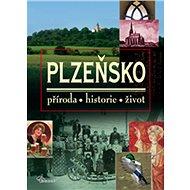 Plzeňsko: příroda, historie, život