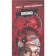 Bruno v hlavě - Kniha