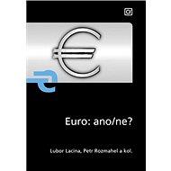 Euro: ano/ne? - Kniha