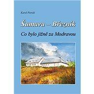 Šumava - Březník Co bylo jižně za Modravou - Kniha