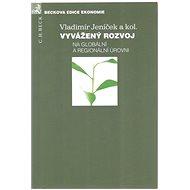 Vyvážený rozvoj: Na globální a regionální úrovni - Kniha