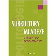 Subkultury mládeže - Kniha