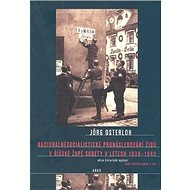 Nacionálně socialistické pronásledování Židů v říšské župě Sudety: Sudety 1938–1945