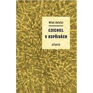 Ezechiel v kopřivách - Kniha