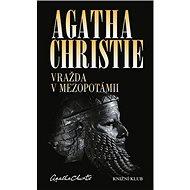 Vražda v Mezopotámii - Kniha