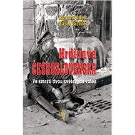 Hrdinové Československa: Ve smršti dvou světových válek - Kniha