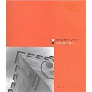 Dlažební kostky - Kniha