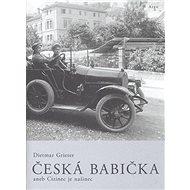 Česká babička: aneb Cizinec je našinec - Kniha