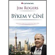 Býkem v Číně: Investujte se ziskem na největším trhu světa - Kniha