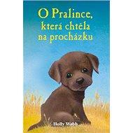 O pralince, která chtěla na procházku - Kniha