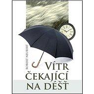 Vítr čekající na déšť - Kniha
