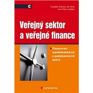 Veřejný sektor a veřejné finance: Financování nepodnikatelských a podnikatelských aktivit - Kniha