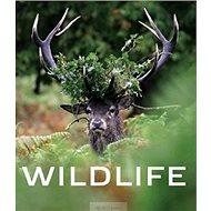 Wildlife - Kniha