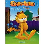 Garfieldova show č. 3: Úžasný létající pes a další příběhy - Kniha