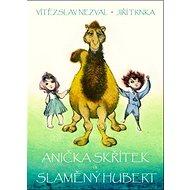 Anička skřítek a Slaměný Hubert - Kniha
