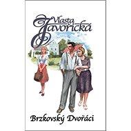 Brzkovský Dvořáci - Kniha