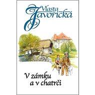 V zámku a chatrči - Kniha