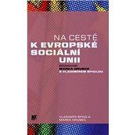 Na cestě k evropské sociální unii: Rozhovor Marka Hrubce s Vladimírem Špidlou - Kniha
