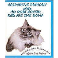 Casperove príhody alebo Čo robí kocúr, keď nie sme doma - Kniha