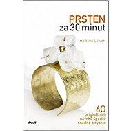 Prsten za 30 minut: 60 originálních návrhů šperků snadno a rychle - Kniha