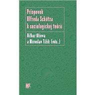 Príspevok Alfreda Schütza k sociologickej teórii - Kniha