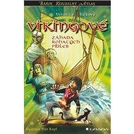 Vikingové: Záhada rohatých přileb - Kniha