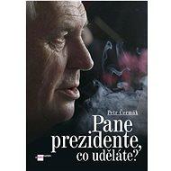 Pane prezidente, co uděláte? - Kniha
