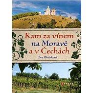 Kam za vínem na Moravě a v Čechách - Kniha