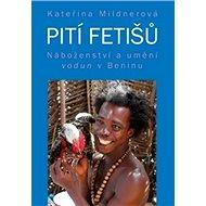 Pití fetišů: Náboženství a umění vodun v Beninu - Kniha